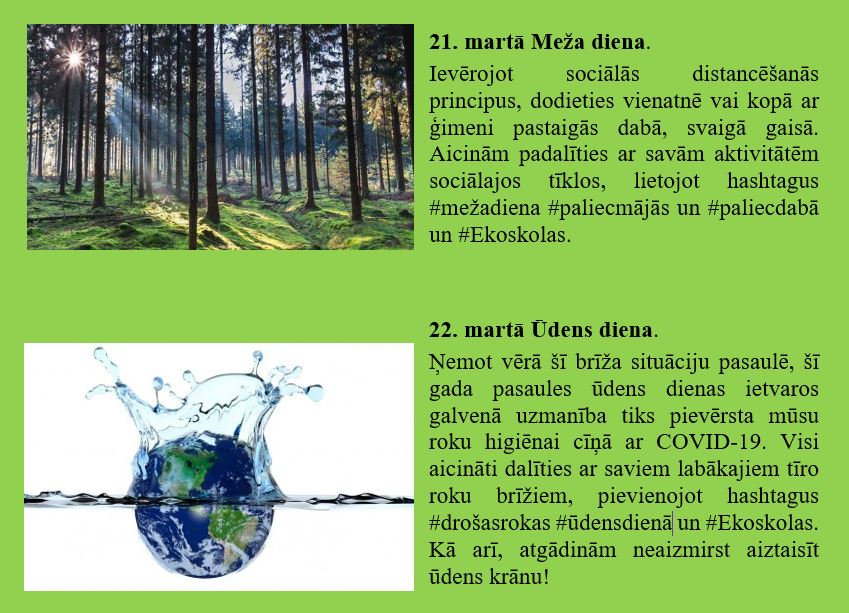 vides_dienas